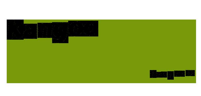 Logo Kangoo Boot Camp